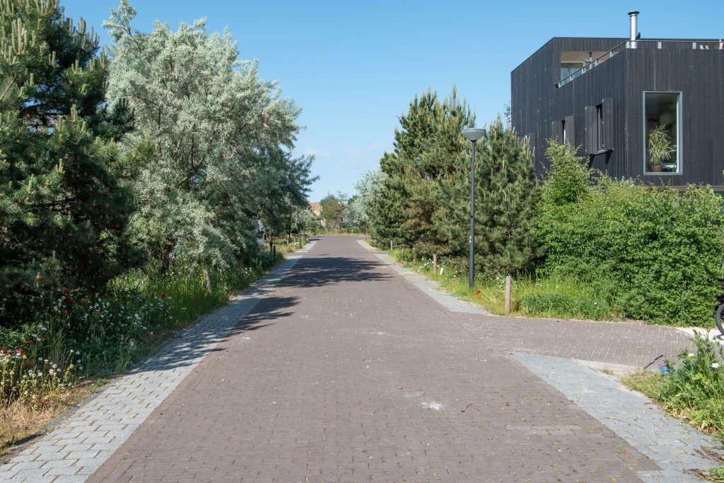 Foto openbare ruimte rieteiland Oost