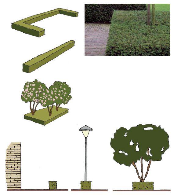 impressies beplanting Zonneheuvel Vught