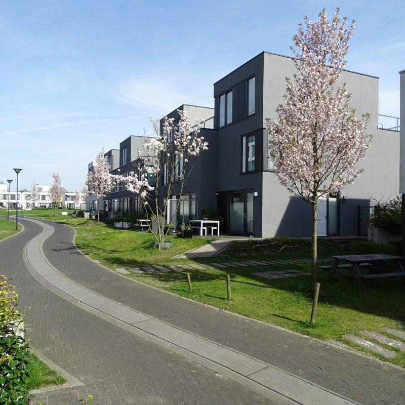 2006_Frij'hof_Nijmegen_Winnaar meervoudige opdracht