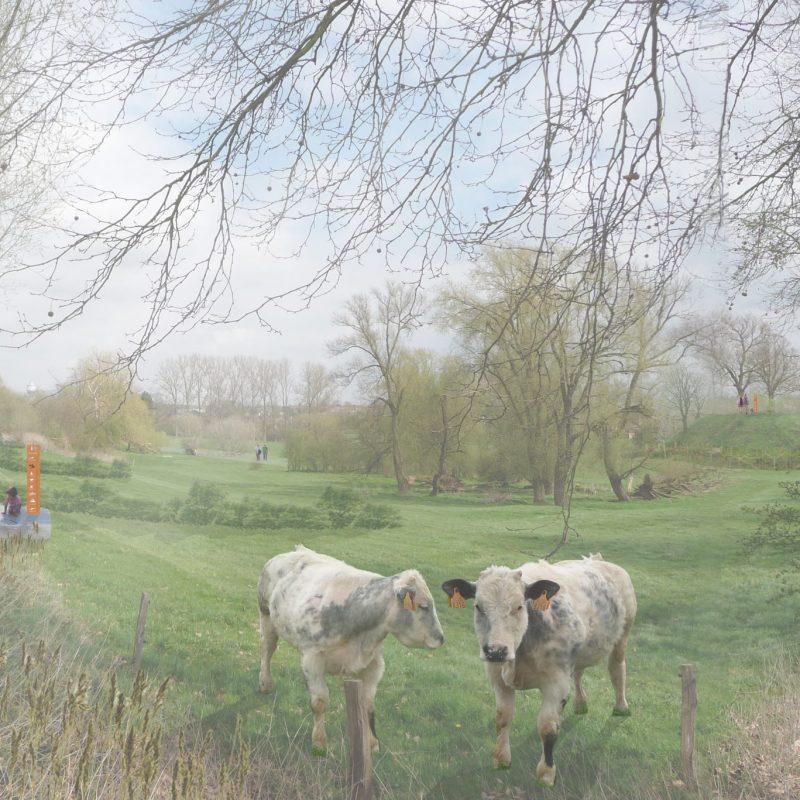 2013_Landschapspark Sinte Gitter_Landen, België_Tweede selectieronde Open oproep Vlaams Bouwmeester